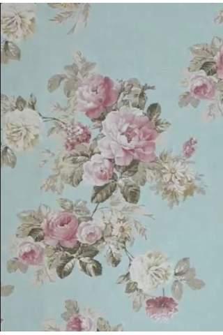 Engelse roos ijsblauw